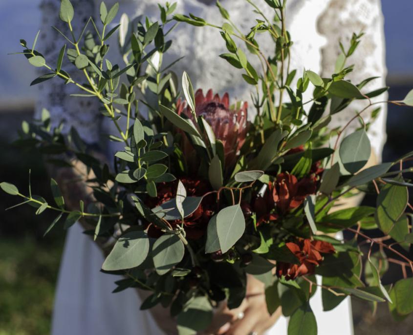 Les fleures des Petites Roches Grenoble
